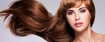 Cbliss cabelo - cliente - precioompra atualmente seu coroa jóia Cuidado sangue embarcação e Além disso começa para leva orgulho em atraente cabelo