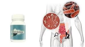 Intoxic - preço - farmácia - como aplicar