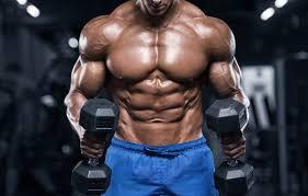 Flexuline Muscle Builder - efeitos secundarios - capsule - Amazon