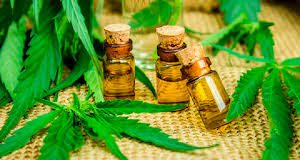 Cannabis Oil - limpeza do corpo- como usar - Amazon - Encomendar