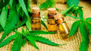 Cannabis Oil - limpeza do corpo- como usar - Amazon - Encomendar