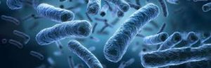 Detoxerum - para limpar o corpo- preço - como usar - onde comprar