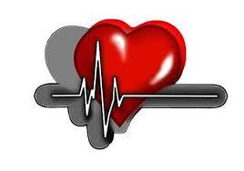 Cardiline - para hipertensão - criticas - preço - como usar