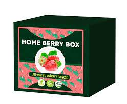 Home berry box - funciona - capsule - como aplicar