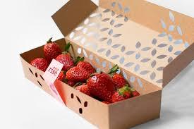 Home berry box - para emagrecer - preço - onde comprar - criticas