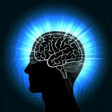 Neurocyclin - forum - Encomendar - como aplicar