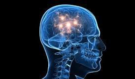 Neurocyclin - Amazon - onde comprar - Portugal