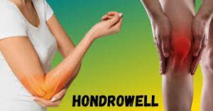 Hondrowell - preço - pomada - como aplicar