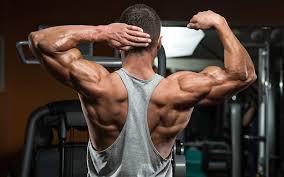 Truflexen Muscle Builder - para massa muscular - forum - como aplicar - preço